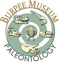 Musée Bupee aux USA.